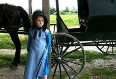 In the past twenty years, Amish populations have doubled expanding into new corners of the U. bringing the Old Order's numbers to around living in 28 states…finally reaching their P…