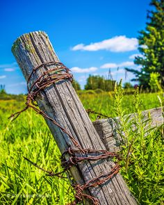 fence post with rusty barbed wire