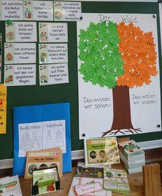 Unsere kleine Themenecke zum Thema Wald