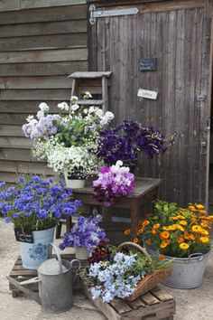 Buckets of seasonal locally grown cut flowers for DIY brides from Green & Gorgeous