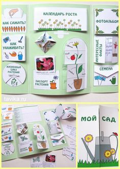 Vorschule Basteln Herbst – Rebel Without Applause Teaching Science, Science For Kids, Science Activities, Teaching Kids, Kids Learning, Art For Kids, Activities For Kids, Science Fair Projects, Book Projects