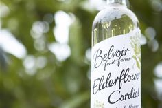 Belvoir Fruit Farms: how elderflower cordial built a business Elderflower Cordial, Building A Business, Alcohol Free, Juices, Farms, Smoothies, Homemade, Fruit, Drinks