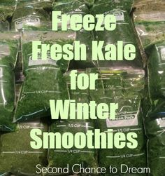 freeze fresh kale for winter smoothies - Can I Freeze Kale