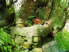 Fairy Door in a tree Real Fairies, Fairy Doors, Wood Watch, Ideas, Wooden Clock, Thoughts