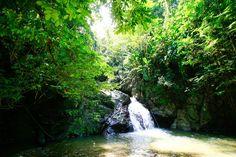 Tobago: Ausflug zur einmaligen Karibik-Insel mit der AIDA Luna