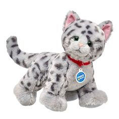 The only domestic cat with spots like wild cats, the Ocicat is active and athletic! While it looks wild, it's friendly and dedicated to its owners. Build-A-Bear Workshop Cute Stuffed Animals, Dinosaur Stuffed Animal, Build A Bear Dog, Grey Tabby Kittens, Kitty Cats, Custom Teddy Bear, Ocicat, Pikachu, My Little Nieces