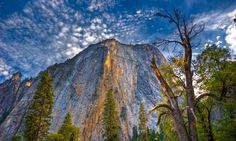 Looking Upward - El Capitan,Yosemite National Park