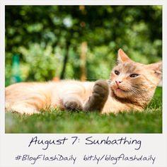 August 7: Sunbathing #blogflashdaily #writing #writingprompt