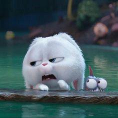 Cute Bunny Cartoon, Cute Cartoon Pictures, Cartoon Profile Pics, Cartoon Pics, Cute Cartoon Wallpapers, Rabbit Wallpaper, Cute Cat Wallpaper, Bear Wallpaper, Cute Disney Wallpaper