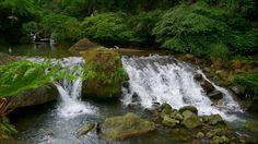 Taiwan  #nature