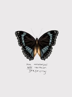 Butterfly Illustration, Illustration Art, Art Hoe, Tumblr Wallpaper, Good Vibes, Good Day, Beautiful Words, Instagram Feed, Best Quotes