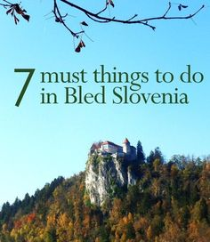 7 Must Things to Do in Bled Slovenia   www.thesunnysideo...