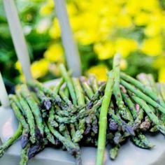 These productive perennial vegetables you just need to plant once and enjoy year after year.