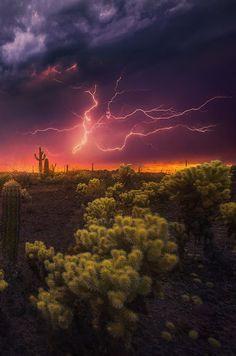 Desert Fireworks by Marc Adamus - Photo 125925717 - (Arizona) Beautiful Sky, Beautiful Landscapes, Beautiful World, Beautiful Places, Landscape Photography, Nature Photography, Skier, Nature Sauvage, Desert Dream