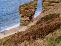 Moray Coastal path, near Lossiemouth, Scotland