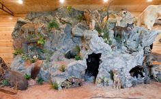 Man Cave} Trophy Room