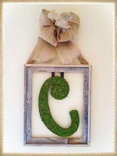 Moss Letter w/Frame