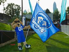 Blue gets ready for a @Charlotte Hounds game!