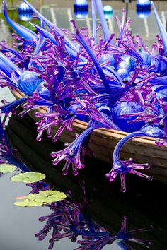 """Chihuly"" Exhibit of giant glass blown sculptures among the gardens, etc....Denver Botanical Gardens...Thru November 2014) Worth seeing!!!"