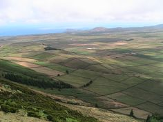 Açores, Ilha Terceira, Agosto 2008