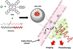 Single Injectable Agent Spots Tumors and Destroys Them