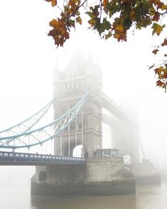 Image result for foggy morning architectural photography