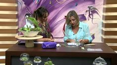 Mulher.com 25/03/2015 Alessandra Assi - Suculentas em biscuit Parte 2/2
