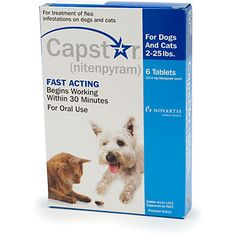 Image of Capstar Cat & Small Dog 11mg 2-25 lbs Blue 6 Tablet