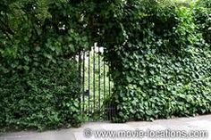 """Rosmead Gardens, London W11 used in the movie Notting Hill--Anna and William break in at night """"whoops a daisy""""!"""