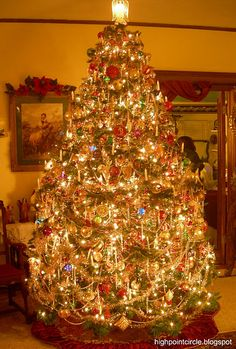 This is what I want my tree to look like someday....