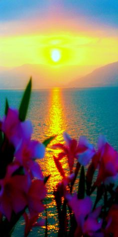 Sea of Galilee, Tiberias, Israel. Probably one of the most ridiculously beautiful pictures ever!