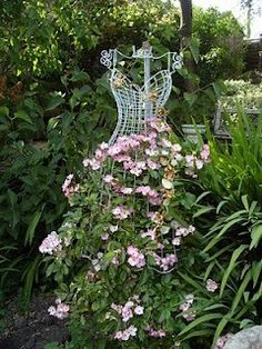 Wild Rose Topiary!  Beautiful!!                                        I would like to do this with my purple clematis vine.