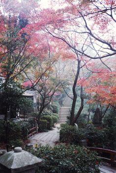 Japanese garden ❥