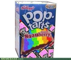 Nyan Cat pop tarts... REALLY? really??