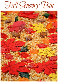Super simple fall sensory bin for toddlers and preschoolers from And Next Comes L