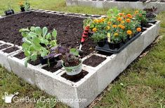 Concrete block raised garden bed ready for planting