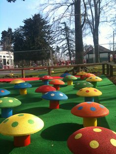Outdoor classroom with toadstool seating