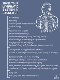 Signs Your Lymphatic System is Backed Up - 16 ways to activate your Lymphatic System