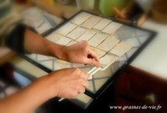 Recette de base des crackers