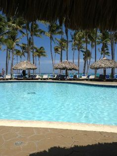 9d2a8e97bee9a9 CLUB MED PUNTA CANA - Updated 2019 Prices   Resort (All-Inclusive) Reviews  (Dominican Republic) - TripAdvisor
