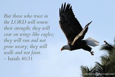 Through God's word, we will always have the strength to walk steadfast in our journey with Him. Mission Images, Wings Like Eagles, Isaiah 40 31, Well Said Quotes, Bible Verses, Scriptures, Lord And Savior, Proverbs, Christianity
