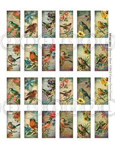 Vintage Birds 1 x 2 inch Domino Digital Collage Sheet - Printable Download- Jewelry, Scrapbook, Crafts. $3.50, via Etsy.