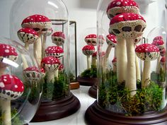 crochet mushrooms! Holly Procktor - Terrariums  made with thrifted glassware, handpainted fabric, and natural mosses.  Woodland and Norwegian forest babyb ib and rattle sets. Made for City of Craft 2010, Toronto's celebration of all things handmade (www.cityofcraft.com)