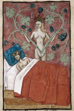dream of Astyages Speculum humanae salvationis, France 1470-1480 Marseille, Bibliothèque municipale, ms. 89, fol. 4v