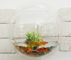 Neat space-saving idea for having fish. I don't seem to mind things as much when they don't take up my floor space.