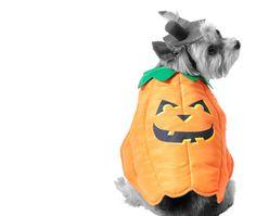 How we Halloween! #TopTwelveThursdays