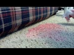How to Remove a Red Kool Aide Stain from Carpet THIS REAL WORKS. I DID THIS LAST NIGHT.