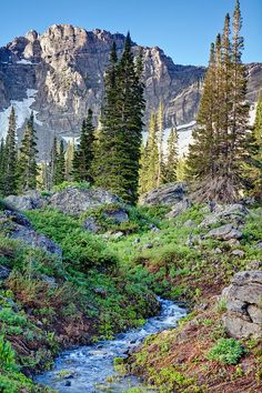Albion Basin, Little Cottonwood Canyon, Wasatch Mountains, Alta, Utah - a great place for hikes & biking. photo by Utah Images