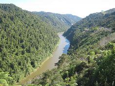 Desde tiempos remotos los maorí han considerado el río Whanganui como sagrado y antepasado suyo, reclamando su protección desde hace varias décadas.  El río Whanganui (Te awa tupua para los maorí) es el tercero más largo de Nueva Zelanda y el primero navegable. Está situado al sur de la Isla Norte