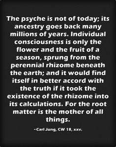The psyche is not of today; its ancestry goes back many millions of years. Individual consciousness is only the flower and the fruit of a season, sprung from the perennial rhizome beneath the earth; and it would find itself in better accord with the truth if it took the existence of the rhizome into its calculations. For the root matter is the mother of all things.